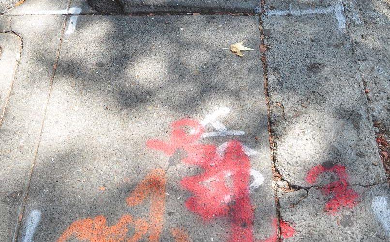 Lakeshore Blog – July 2014