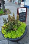 Grand Avenue Planter